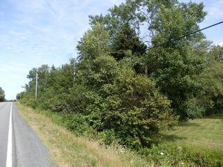 Photo 8: Pictou Landing Road in Pictou Landing: 108-Rural Pictou County Vacant Land for sale (Northern Region)  : MLS®# 202118660
