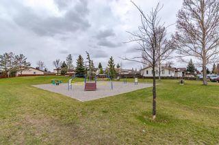 Photo 29: 108 CASTLEBROOK Rise NE in Calgary: Castleridge Detached for sale : MLS®# C4296334