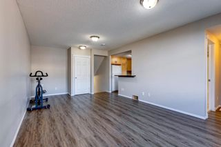 Photo 30: 108 Evermeadow Manor SW in Calgary: Evergreen Detached for sale : MLS®# A1142807