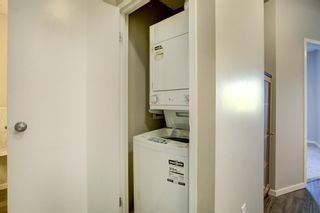 Photo 22: 4104 73 Erin Woods Court SE in Calgary: Erin Woods Apartment for sale : MLS®# A1042999