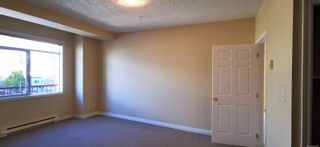 Photo 14: 302 2423 Beacon Ave in : Si Sidney South-East Condo for sale (Sidney)  : MLS®# 888097