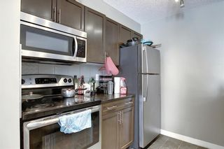 Photo 13: 1214 1317 27 Street SE in Calgary: Albert Park/Radisson Heights Apartment for sale : MLS®# A1070398