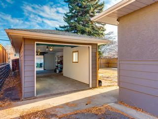 Photo 45: 68 Cawder Drive NW in Calgary: Collingwood Detached for sale : MLS®# A1053492