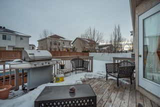 Photo 24: 54 Caldwell Crescent in Winnipeg: Whyte Ridge Residential for sale (1P)  : MLS®# 202004817