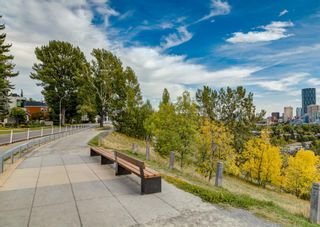 Photo 16: 1415 5 Street NW in Calgary: Rosedale Detached for sale : MLS®# A1147874