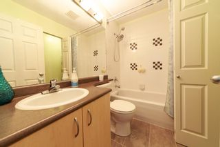 """Photo 7: 36 123 SEVENTH Street in New Westminster: Uptown NW Townhouse for sale in """"ROYAL TERRACE"""" : MLS®# R2595208"""