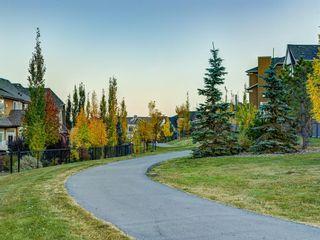 Photo 50: 250 MAHOGANY Place SE in Calgary: Mahogany Detached for sale : MLS®# A1069286