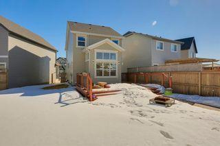 Photo 36: 64 NEW BRIGHTON Grove SE in Calgary: New Brighton Detached for sale : MLS®# C4233514