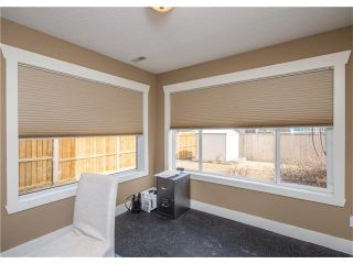 Photo 46: 34 CHAPALA Court SE in Calgary: Chaparral House for sale : MLS®# C4108128