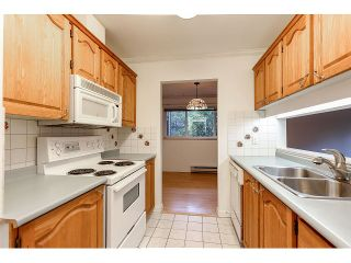 Photo 5: 114 1190 PACIFIC STREET in Coquitlam: North Coquitlam Condo for sale : MLS®# R2004781