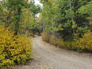 Photo 46: 83 474032 RGE RD 242: Rural Wetaskiwin County House for sale : MLS®# E4256413