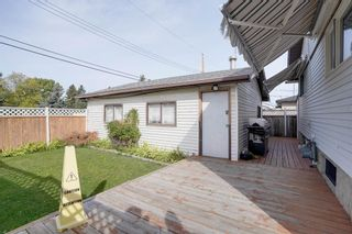 Photo 14: 3307 39 Street SE in Calgary: Dover Detached for sale : MLS®# A1148179