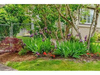 Photo 23: 5098 219 Street in Langley: Murrayville House for sale : MLS®# R2459490