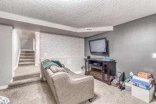 Photo 39: 3359 OAKWOOD Drive SW in Calgary: Oakridge Detached for sale : MLS®# A1145884