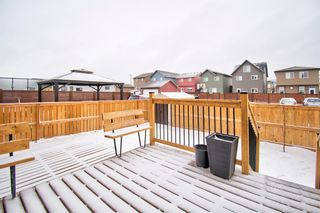 Photo 5: 304 Chinook Gate Close SW: Airdrie Detached for sale : MLS®# A1098545