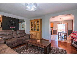 Photo 9: 390 ELGIN Way SE in Calgary: McKenzie Towne House for sale : MLS®# C4019083