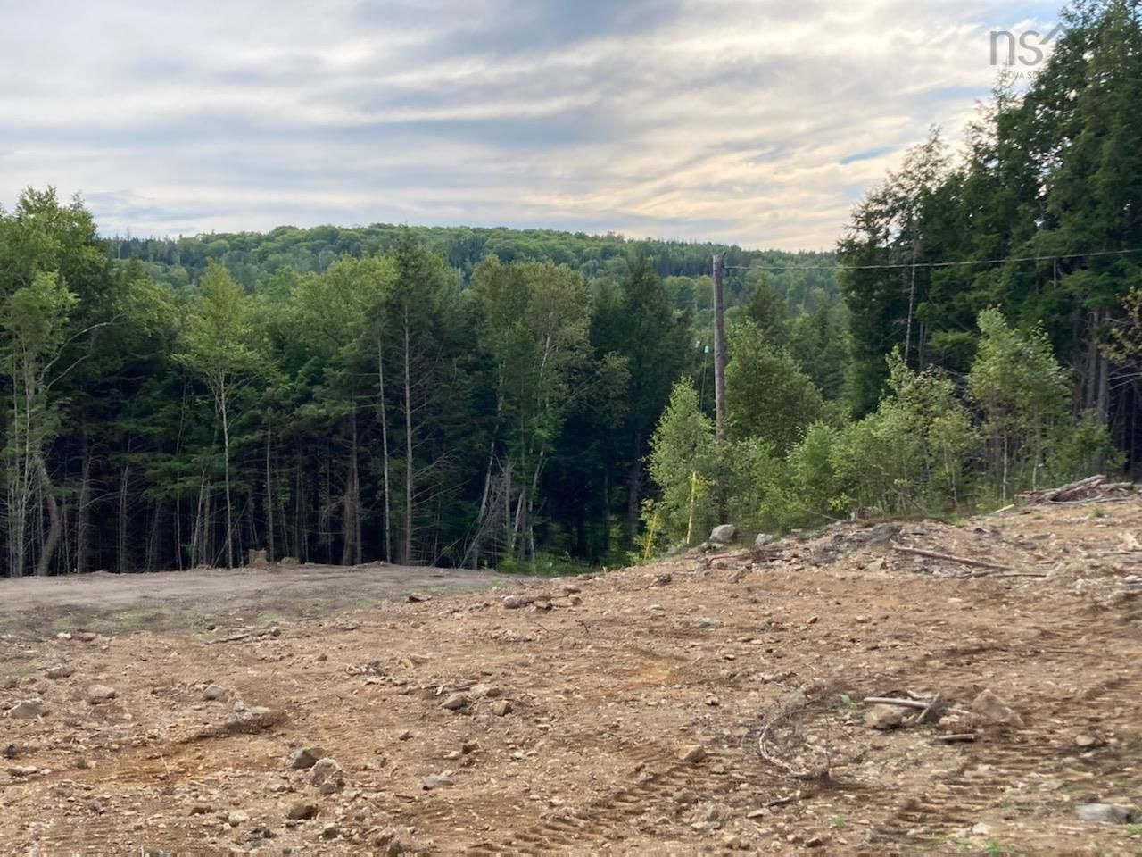 Main Photo: 1504 Greenvale Road in Macphersons Mills: 108-Rural Pictou County Vacant Land for sale (Northern Region)  : MLS®# 202122532