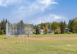 Photo 47: 944 Maplecroft Road SE in Calgary: Maple Ridge Detached for sale : MLS®# A1147511