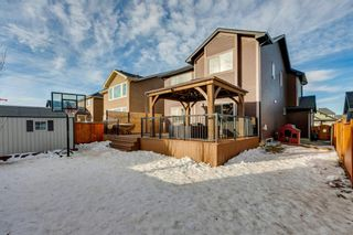 Photo 28: 170 Aspenmere Drive: Chestermere Detached for sale : MLS®# A1063684