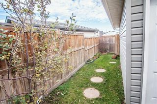 Photo 33: 259 CRANBERRY Place SE in Calgary: Cranston Detached for sale : MLS®# C4214402