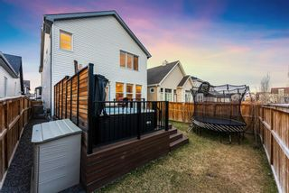 Photo 48: 21 Copperpond Lane SE in Calgary: Copperfield Detached for sale : MLS®# A1100907