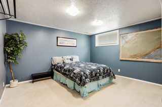 Photo 20: 566 Fairways Crescent NW: Airdrie Detached for sale : MLS®# A1126623
