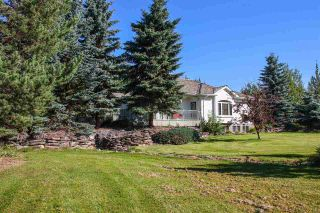 Photo 47: 2501 52 Avenue: Rural Wetaskiwin County House for sale : MLS®# E4228923