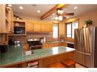 Photo 8: 166 Despins Street in Winnipeg: St Boniface Residential for sale (South East Winnipeg)  : MLS®# 1609150