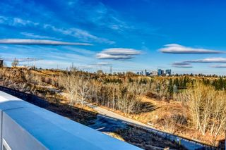 Photo 41: 22 Lissington Drive SW in Calgary: North Glenmore Park Residential for sale : MLS®# A1066780