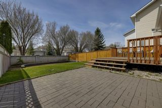 Photo 31: 208 Mt Selkirk Close SE in Calgary: McKenzie Lake Detached for sale : MLS®# A1104608