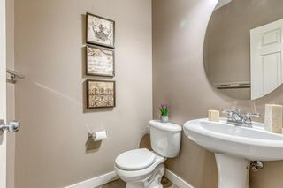 Photo 19: 212 COPPERPOND Circle SE in Calgary: Copperfield Detached for sale : MLS®# C4305503