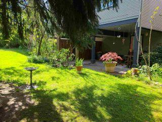 "Photo 35: 17 11229 232 Street in Maple Ridge: East Central Townhouse for sale in ""FOXFIELD"" : MLS®# R2576848"