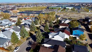 Photo 32: 305 Martinwood Place NE in Calgary: Martindale Detached for sale : MLS®# A1038589
