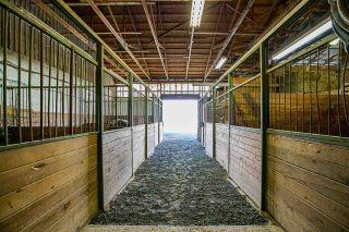 Photo 21: 1280 POWERHOUSE Road in Abbotsford: Sumas Prairie House for sale : MLS®# R2565055