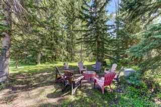 Photo 34: 10 32114 Range Road 61: Rural Mountain View County Detached for sale : MLS®# A1024216