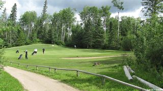 Photo 15: 174 Neis Drive in Emma Lake: Residential for sale : MLS®# SK871623