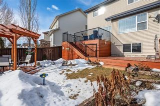 Photo 37: 215 COPPERFIELD Manor SE in Calgary: Copperfield Detached for sale : MLS®# C4288543