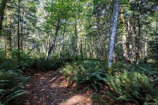 Photo 72: Lot 2 Eagles Dr in : CV Courtenay North Land for sale (Comox Valley)  : MLS®# 869395