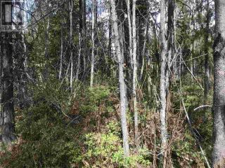 Photo 1: LOT 10 CHIEF LAKE ROAD in Prince George: Vacant Land for sale : MLS®# R2531431