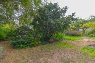 Photo 35: 126 Joseph St in : Vi Fairfield East House for sale (Victoria)  : MLS®# 884762