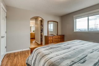 Photo 17: 176 Creek Gardens Close NW: Airdrie Detached for sale : MLS®# A1048124