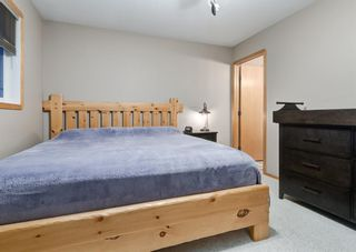 Photo 20: 103 DOHERTY Close: Red Deer Detached for sale : MLS®# A1147835