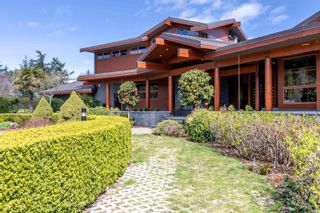 Photo 8: 3275 Campion Rd in : CS Martindale House for sale (Central Saanich)  : MLS®# 866155