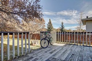 Photo 6: 7 PINEBROOK Place NE in Calgary: Pineridge Detached for sale : MLS®# C4221689