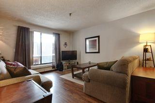 Photo 7: 106 819 4A Street NE in Regal Manor: Apartment for sale : MLS®# C3611396