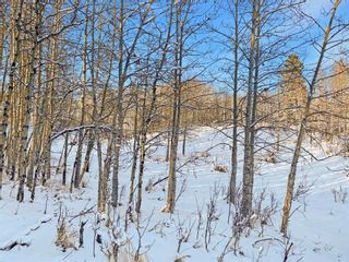 Photo 18: 31 Grove Lane in Rural Rocky View County: Rural Rocky View MD Residential Land for sale : MLS®# A1097684