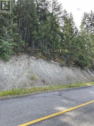 Photo 24: 1803 SOUTH LAKESIDE DRIVE in Williams Lake: Vacant Land for sale : MLS®# R2612495