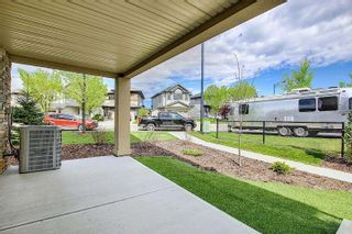 Photo 27: 1 1023 173 Street in Edmonton: Zone 56 Townhouse for sale : MLS®# E4246751