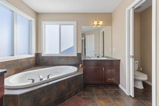 Photo 27: 101 COPPERSTONE Close SE in Calgary: Copperfield Detached for sale : MLS®# A1076956