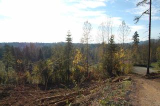 Photo 2: 9507 DAWSON DRIVE in Mission: Mission BC Land for sale : MLS®# R2220007